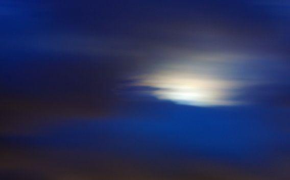 Blauw van Rogier Vermeulen