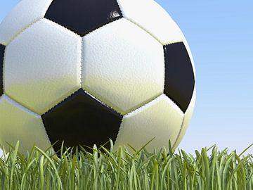 Fußball auf Gras von Jan Brons