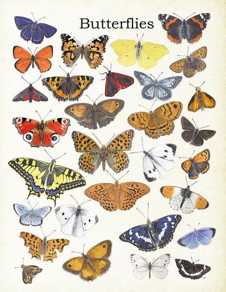 Butterflies van Jasper de Ruiter