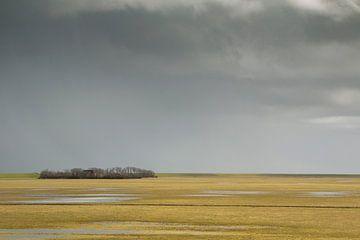 Polderlandschap met plassen en boerderij tussen bomen von Marjon Meinders