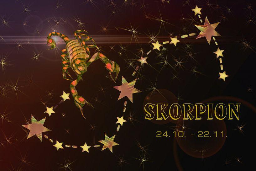 sterrenbeeld - Schorpioen van Christine Nöhmeier