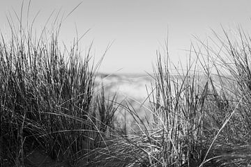 Zicht op zee in zwart wit