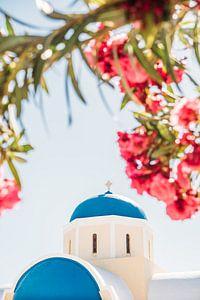 Roze Bloemen en Santorini Kerk van Patrycja Polechonska