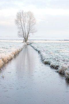 Winter von Connie de Graaf