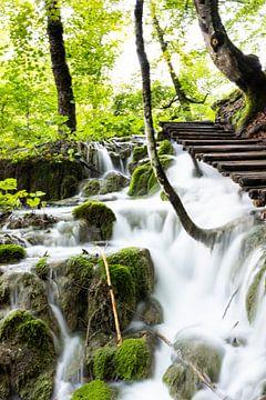 Plitvice meren, Kroatie van Ester Overmars