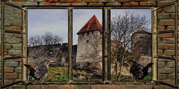 Raam uitzicht  - merel dringt er bij de Burg van Christine Nöhmeier