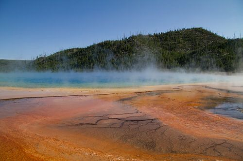 Dampende poelen in Yellowstone National Park
