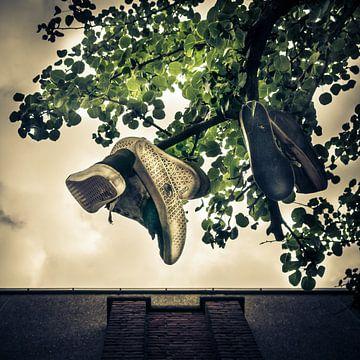 Shoes van Rob van der Pijll