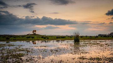 Graspol en uitkijktoren op het Marumerlage van