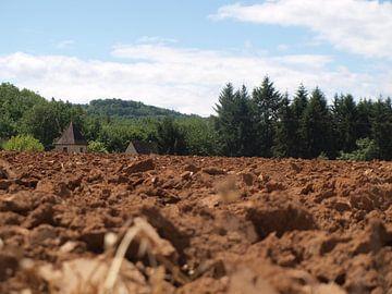 Feld in der Nähe von St. Leon sur Vezere von Rinke Velds