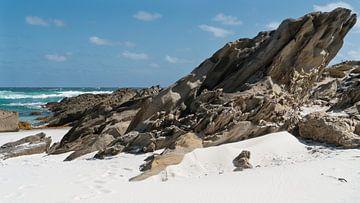 Strand in Fitzgerald River National Park, West-Australië van Alexander Ludwig