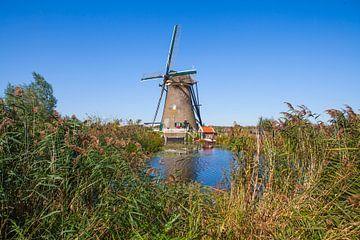 Mühle Kinderdijk von Rob Altena