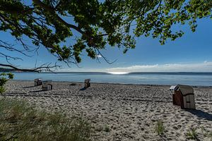 Strandkörbe im Sonnenlicht, Naturstrand Lobbe