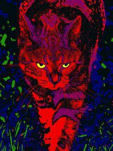 Katze bei nächtlicher Jagd von McRoa