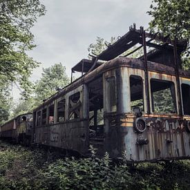 Verlassener Urbex-Zug mitten im Wald von Steven Dijkshoorn