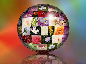 bloemen bol van Klaartje Majoor