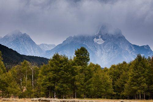 Bewolkte Grand Teton National park van