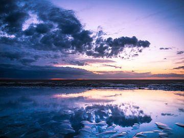 Donkere wolken van Nathalie Treep