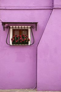 Colorful Burano (Venice) van