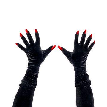 Zwart fluwelen klauwen van Peter Hermus