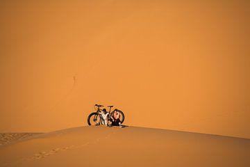 Een jongstel en een immense duin: Sahara. van