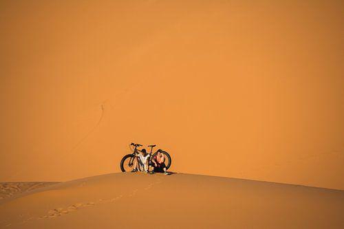 Een jongstel en een immense duin: Sahara.