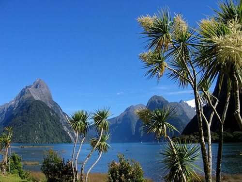 Milford Sound van Gert-Jan Siesling