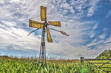 Windmolen op een natuureiland van Frans Blok