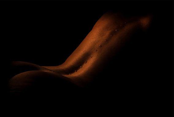 artistiek naakt, nude van Yvette Bauwens