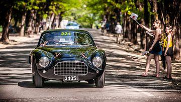 Forza Ferrari! von Michiel Mulder