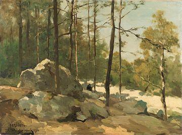 Ein Blick in den Wald bei Barbizon, Johan Hendrik Weissenbruch, 1900