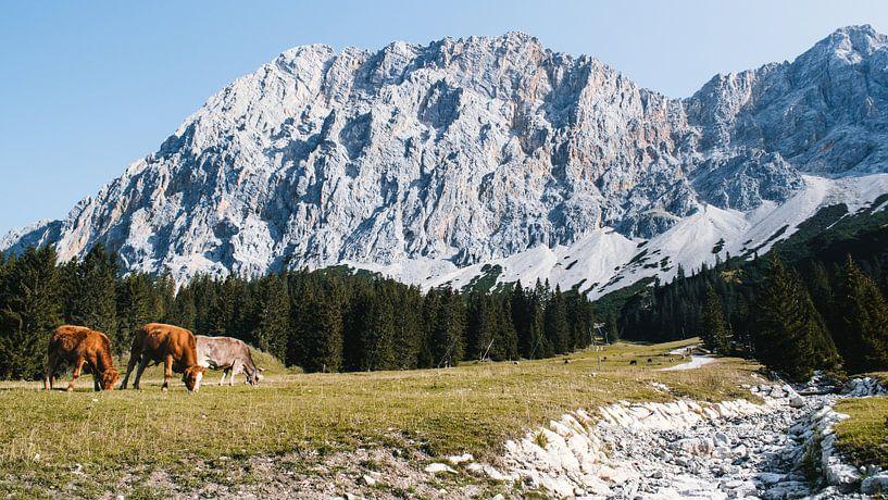 Uitzicht op de Zugspitze van Rob van Dongen
