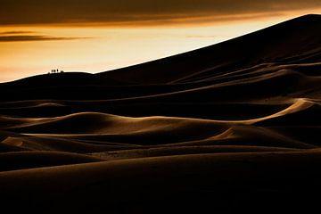 Silhouette in der Sahara von Sam Mannaerts
