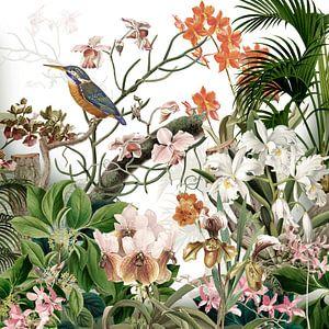 Der Eisvogel bei den Orchideen in Retrofarben
