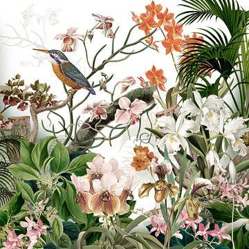 De ijsvogel met de orchideeën in retrokleuren van christine b-b müller