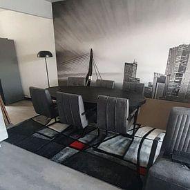 Kundenfoto: Skyline von Rotterdam von eric van der eijk, auf fototapete