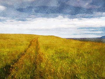Karrenspoor op Videy, IJsland van Frans Blok