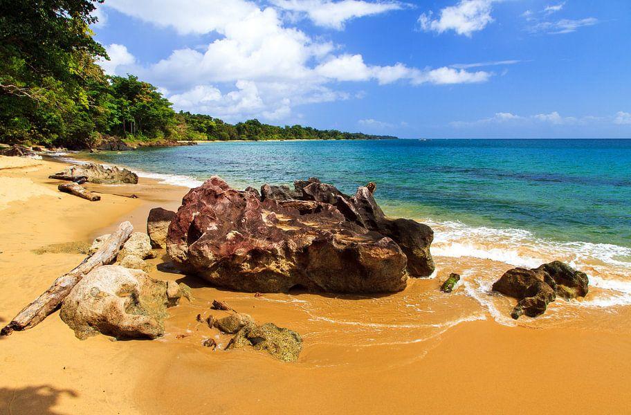 Rots op het tropische strand van Dennis van de Water