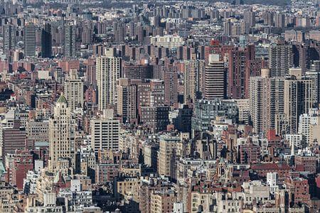 NEW YORK CITY 16