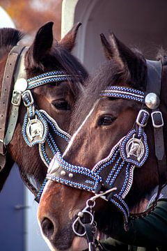 Concept Kaltblutmarkt 2018 : 2 horse faces van Michael Nägele