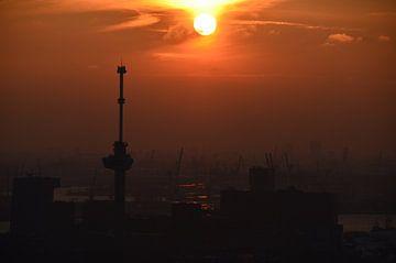 Zonsondergang boven de haven van Rotterdam van Marcel van Duinen