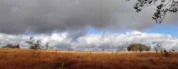Hogevenen panorama von Lex Schulte