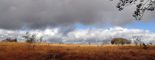 Hogevenen panorama van Lex Schulte
