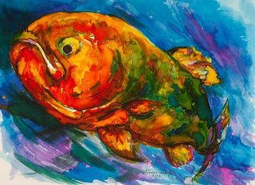 Chagarischer roter Fisch. von Ineke de Rijk