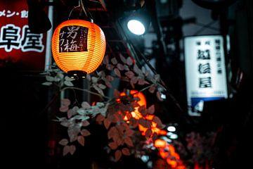 Lampion in Shinjuku van Mickéle Godderis