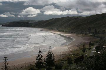 Kust Nieuw-Zeeland von Bijzonder Landschap