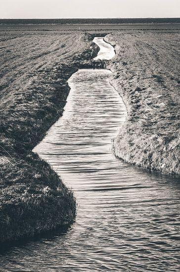 The divide (Marken) van Alessia Peviani