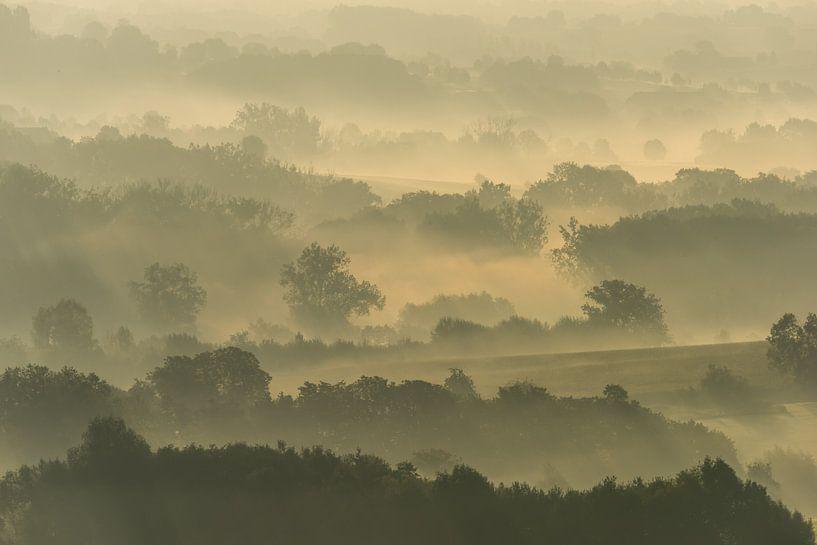 Misty fields van Harald Harms