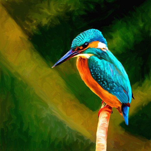 Kingfisher van Andrea Meyer
