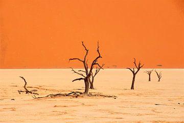 Skelet bomen in Dodevlei bij Sossusvlei in Namibia van Sabine De Gaspari